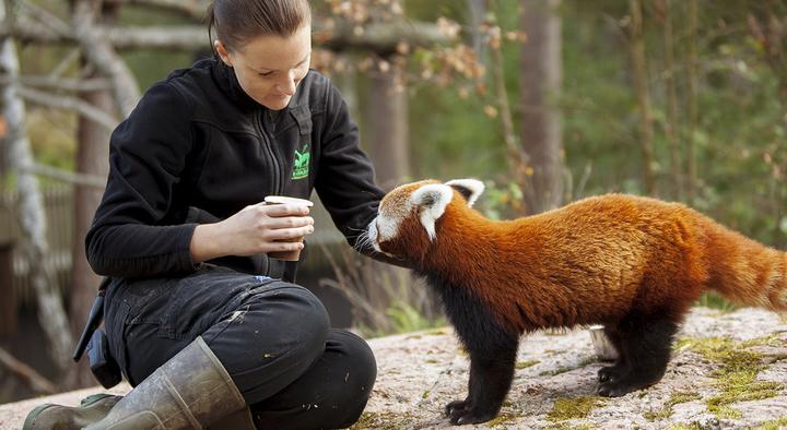 R d panda och marie 2014 09 17 001 medium