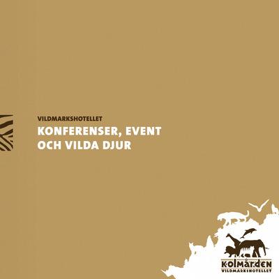 Broschyr vmh konferens puff desktop