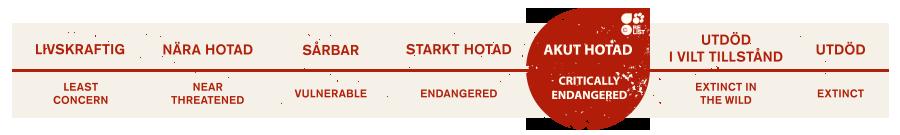 Redlist akut hotad