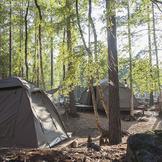 Safaricamp tent bred thumb square