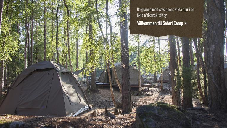 Corepage boendebild safari camp tablet
